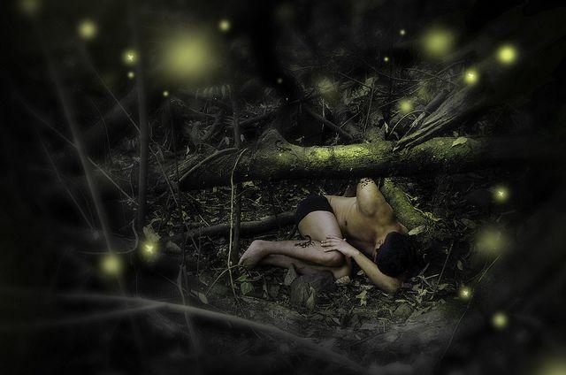 El bosque de las luciérnagas Tlaxcala México