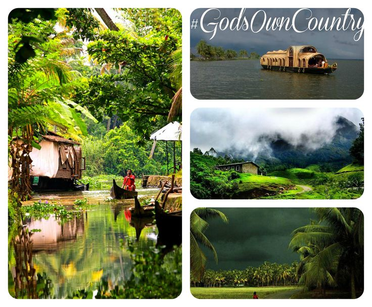 Reasons to Visit Kerala in Monsoon Season!!  KERALA - The God's Own Country transform into slice of paradise with lush greenery around, the backwaters and hills, cloudy sunsets, cool breeze and the cheerful array of festivals. During the monsoon Kerala becomes more and more attractive, its beaches, lakes and hills carpeted with plantations, rain forests and tumbling waterfalls offers breathtaking view of nature www.keralaholidays.com #KeralaMonsoon #MonsoonHolidays #KeralaHolidays…