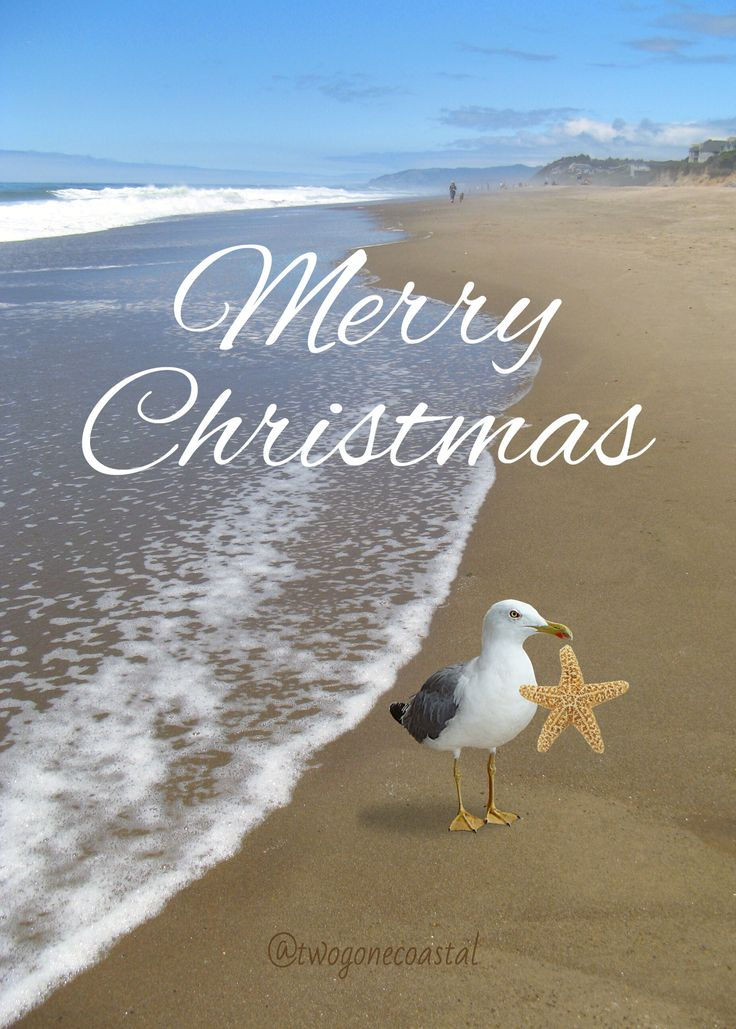 568 best Beach Holiday images on Pinterest | Christmas ...