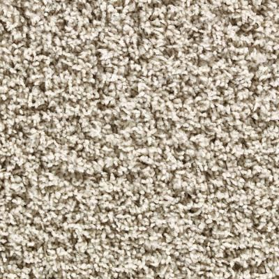 "If your picking new carpet and you are thinking about selling, make sure it's neautral and will not show lots of wear and tear.  A cut berber or commonly known as ""frieze"" is the best option. No colors just plain old tans!"