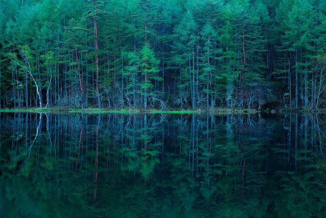 Mishakaike, Nagano, Japan on Flickr.