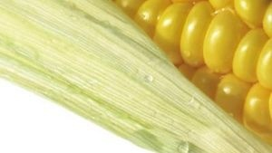 How to Substitute Corn Syrup in a Recipe -for Corn Allergies: So many ways!!