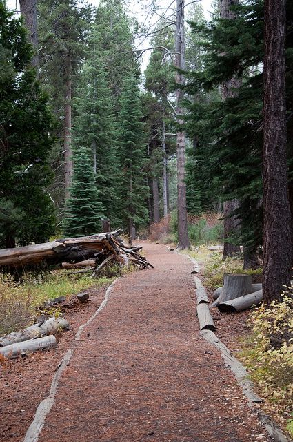Hiking and things to do in Truckee, California.