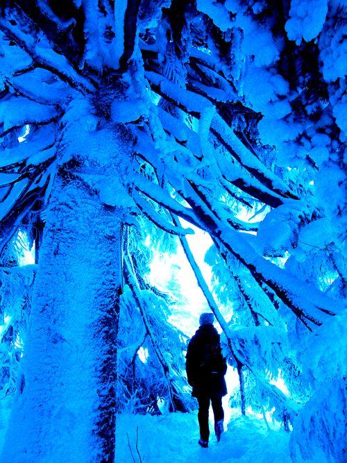 宮城蔵王樹氷の家