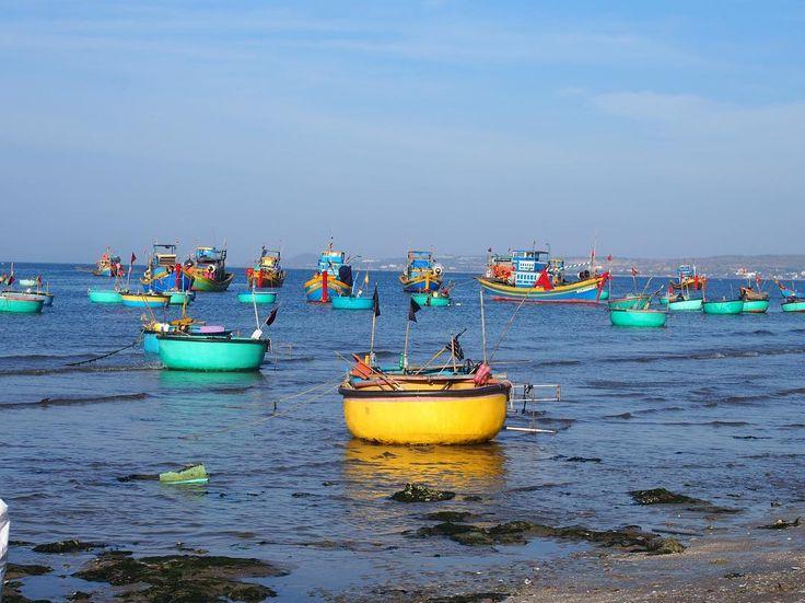 漁師がたくさんいる街ベトナム南部の砂丘で有名な観光地ムイネー名物のこの絵  漁師の船以外にもオケがたくさん浮いています  おそらく帰ってきた船のちょっとした作業のフォローを担当しているのだと思うのですが  誰か分かる方教えて下さい  #taiwa #cocoacana #vietnam #muine #ベトナム #ムイネー #旅 #旅行 #観光 #写真 #海外 #海外生活 #海外旅行 #バックパッカー #海 #世界 #旅人 #海外暮らし #自分磨き #地球の歩き方 #世界 #漁師 #コラム #ここあかな