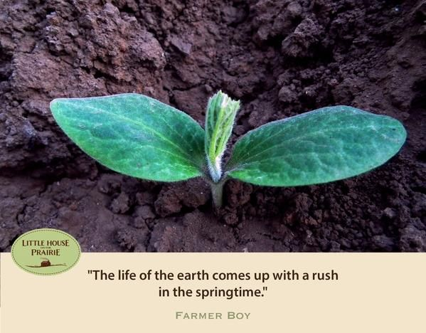 The life of the earth comes up with a rush in the springtime