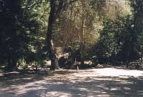 No reservation Camping $15 Big Sur | Pyramid Lake | Lake Isabella | California Camping – Nacimiento Big Sur