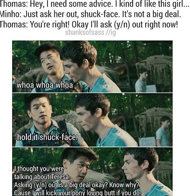 OMG I LOVE THIS!!!! It even has a quote!! Only thing that would make this better would be if Newt was in it