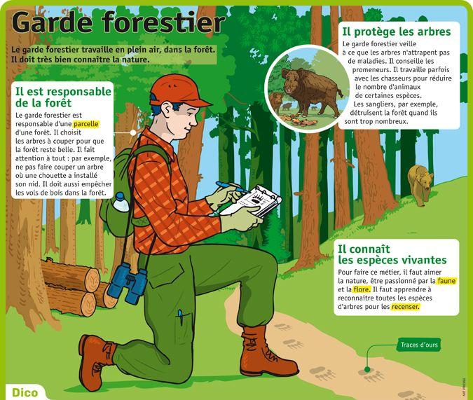 Fiche exposés : Garde forestier