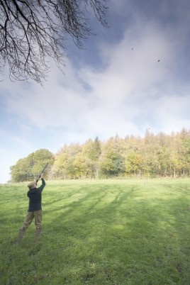 A testing pheasant shooting drive in Wiltshire  © Jake Eastham