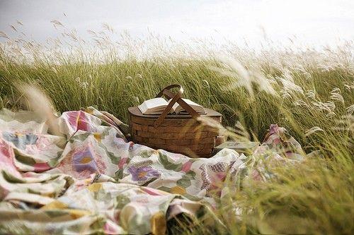 <3Company Picnics, Summer Picnics, Picnics Summer, Picnics Company, Places, Things, Summertime, Picnics Preparing, The Sea