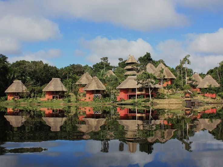 Napo Wildlife Center is an eco-hotel in Amazonian Ecuador which includes the conservation of approximately over 82 square miles of the most pristine Amazon Rain Forest. Guests can canoe down the river, explore the local flora and fauna and enjoy hikes through the forest.