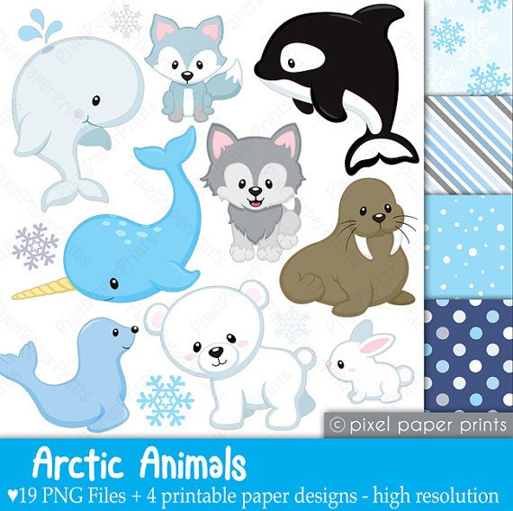 Arctic animals  Clipart and paper set by pixelpaperprints on Etsy, $6.75