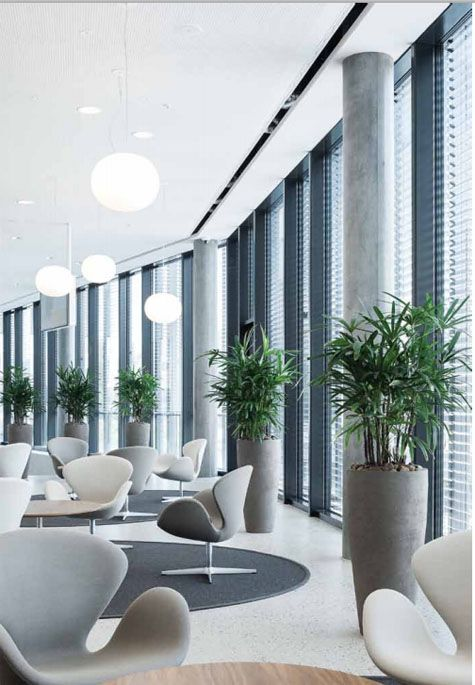 Best OFFICE LANDSCAPES Images On Pinterest Contemporary - Contemporary planters living room