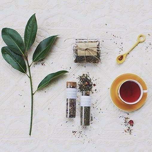 We are so privileged to have @am_i_dreaming_now from NZ as one of our amazing brand stylists!! Love this photo so much, thank you hun  If anyone from NZ or elsewhere outside Australia is interested in our products, please contact us for postage quotes  #thewildnothing #stylist #cupoftea #style #handmade #tea #teas #madeinmelbourne #madeinaustralia #tealover #tealove #flatlay #teaaddict #teaaddiction #tisanes #shoponline #instatea #instagood #instalove #instalike #testubes #teasamples ...