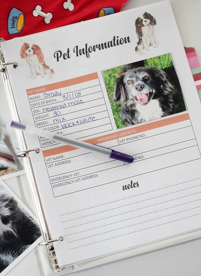 The Printable Pet Binder You Need to Organize Your Pet Records | Sunny Day Famil… – For the Fur Babies