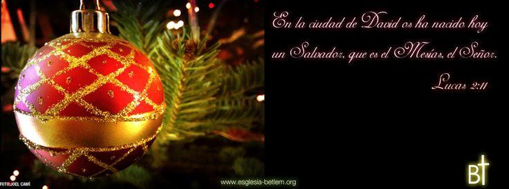 En este 2013 que finaliza, os deseamos una Feliz Navidad