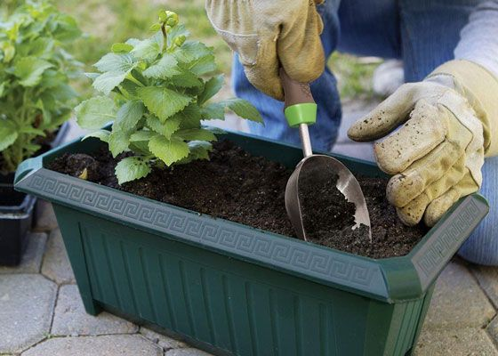 5 Garden Tools You Canu0027t Live Without