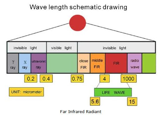 Infrared waves are thermal. In other words, we experience this type of infrared waves every day in the form of heat! The heat that we feel from sunlight, a fire, a radiator or a warm sidewalk is infrared.