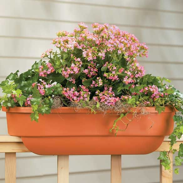 32 Best Deck Rail Planters Images On Pinterest: 60 Best Garden Images On Pinterest