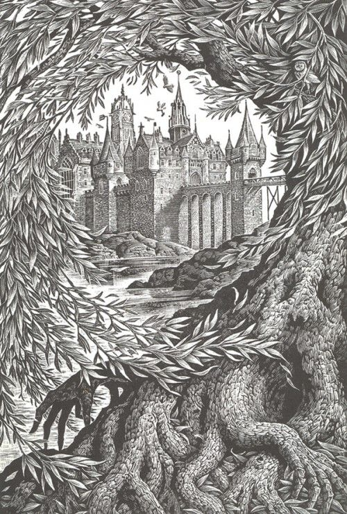 NEW HARRY POTTER COVERS, ILLUSTRATED BY ANDREW DAVIDSON