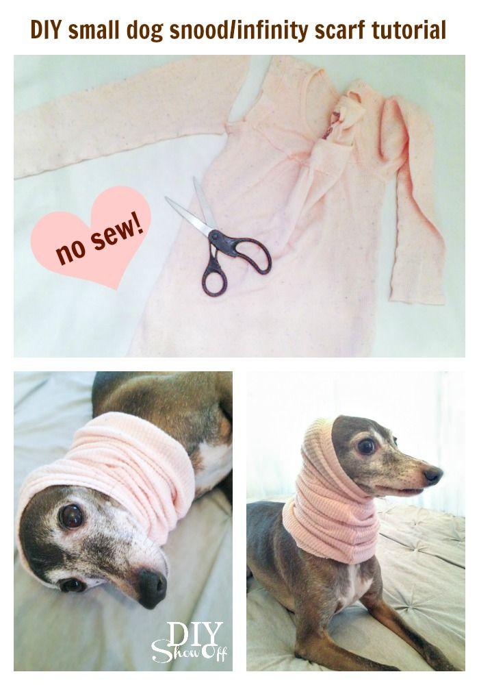 DIY small dog snood/infinity scarf tutorial (no sew) @diyshowoff