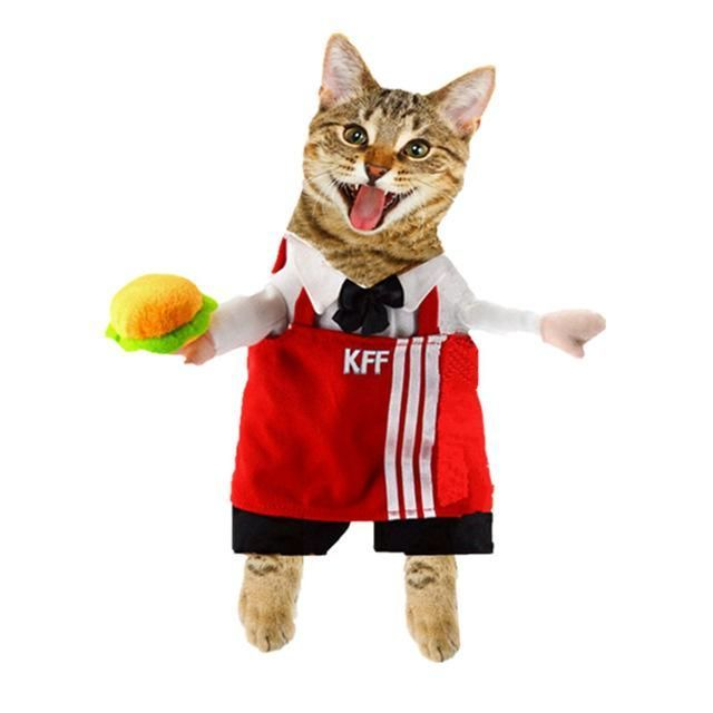 Funny Cat Clothes Suit For Cat Halloween Costume