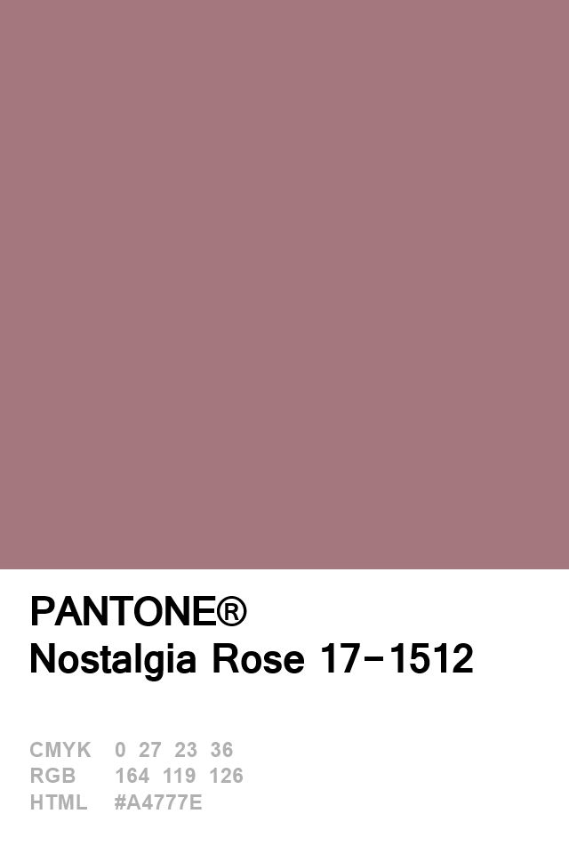 Pantone Nostagia Rose 17-1512 Colour of The Day 05 January