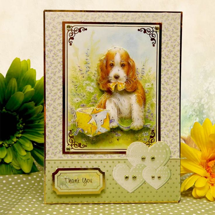 Little Paws by Hunkydory Crafts. Card made using 'Little Paws Luxury Card Collection' http://www.hunkydorycrafts.co.uk/acatalog/Little-Paws-Luxury-Card-Collection-PAWS101.html#SID=212