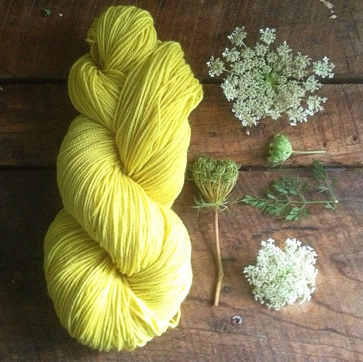 Wren House Yarns: naturally dyed yarn from Queen Anne's Lace