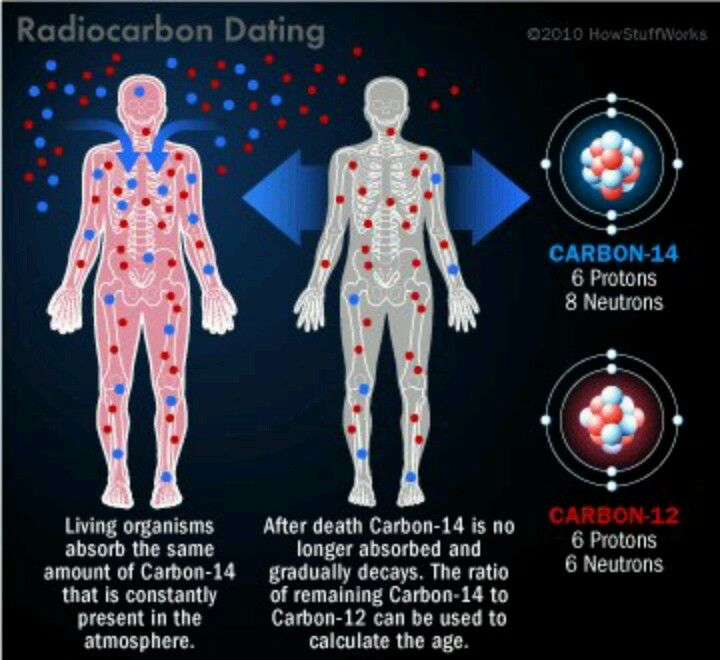 carbon dating methods and fossils archeology