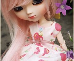 Pullip Papin - a gallery on Flickr