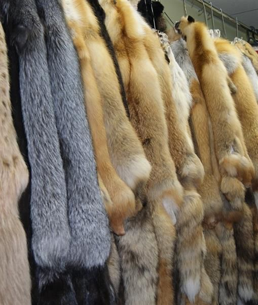 Сургут кожаные пальто