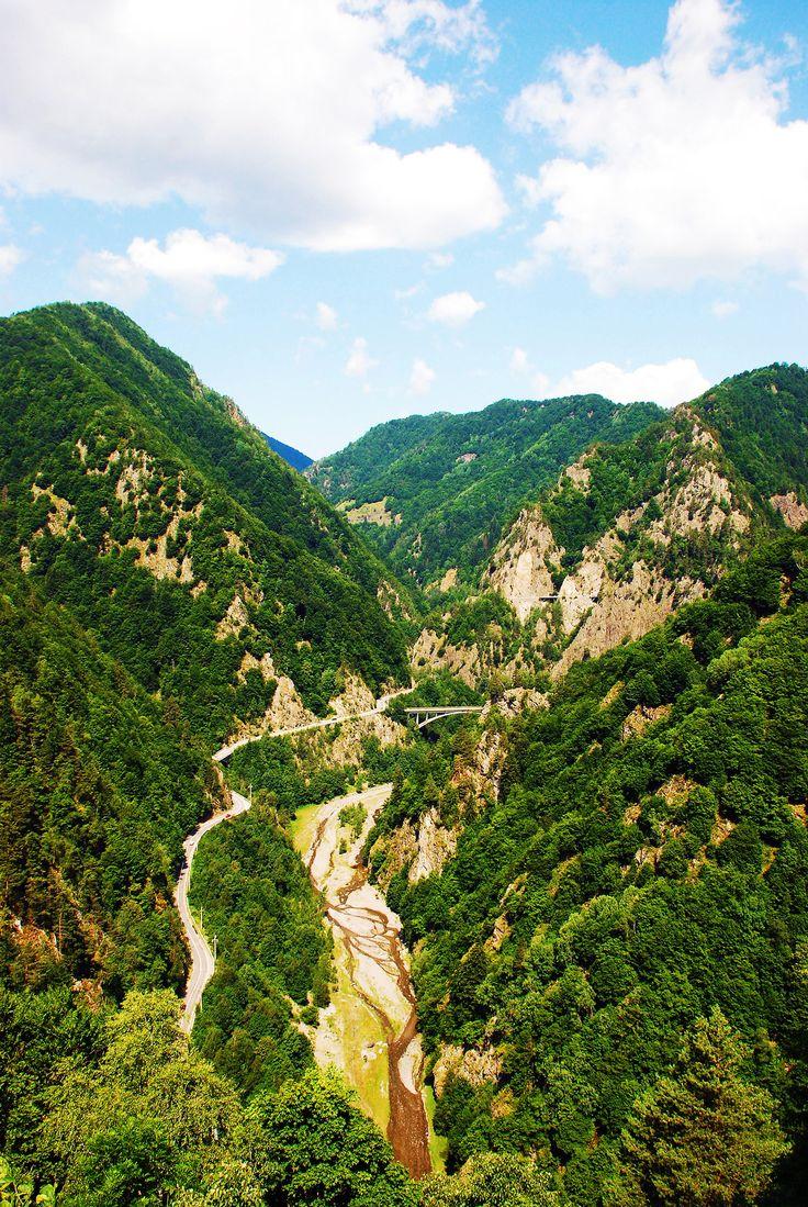 romania - the carpathian mountains in transylvania - photo by Adam Birkan