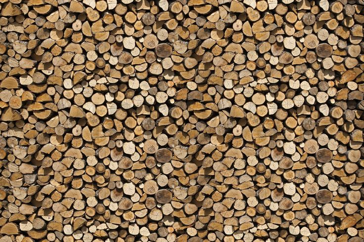 Firewood - Wall Mural & Photo Wallpaper - Photowall
