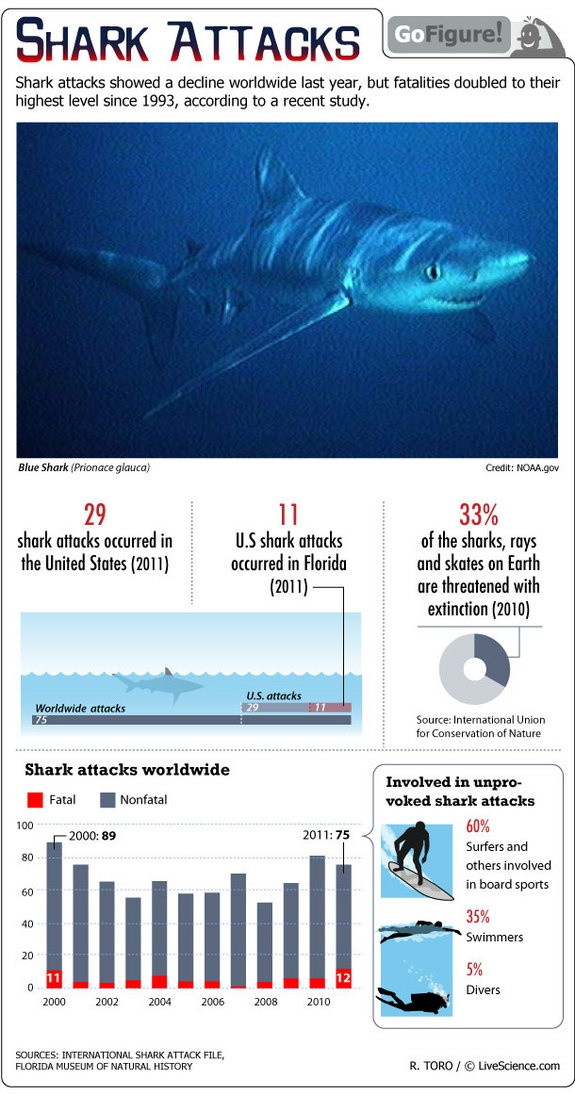 Number of Shark Attacks Down, Fatalities Up