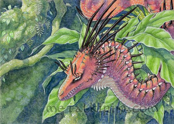Nature And Fantasy Art   Dragons, Unicorns, Fairies By TealNewcombArt