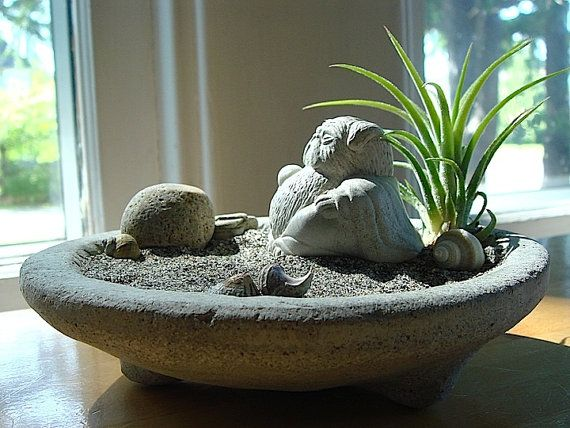 Lucky Pug Buddha Sculpture in Zen Garden Air Plant Terrarium on Etsy, $35.95