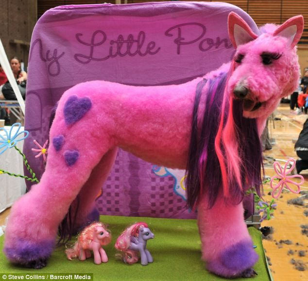 Phoney pony: A poodle creatively groomed as a My Little Pony at the competition in Swanley