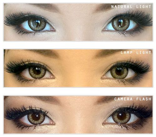 GEOLICA Holicat Barbie Cat Hazel Circle Lenses