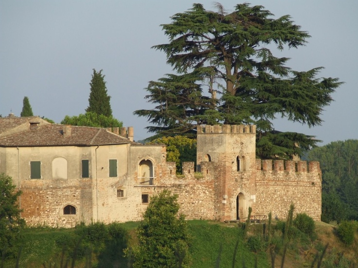 Castellaro Lagusello - 45°22′30″N 10°38′15″E