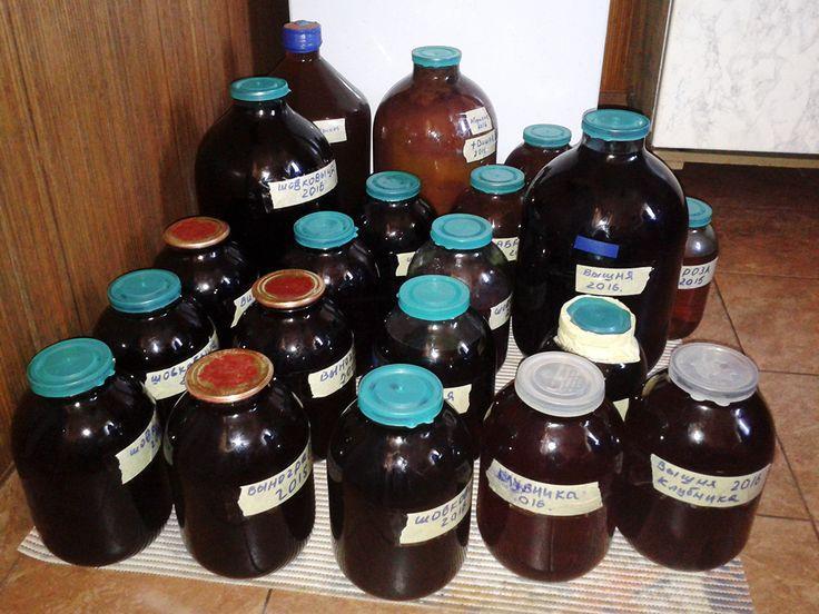 Это можно сказать небольшая статья-отчет, о том, сколько в этом году удалось сделать вина. К сожалению, виноград не уродил, поэтому было решено сделать акцент на других культурах.  Итоги: - клубничное с лепестками роз 7.5 литра; - вишневое 13 литров; - абрикосовое 17.5 литров; - шелковичное 29 литров.  Читать полностью: http://dgz.livejournal.com/267412.html  #dgz.livejournal.com #вино #wine #вишня #абрикос #роза #шелковица #клубника