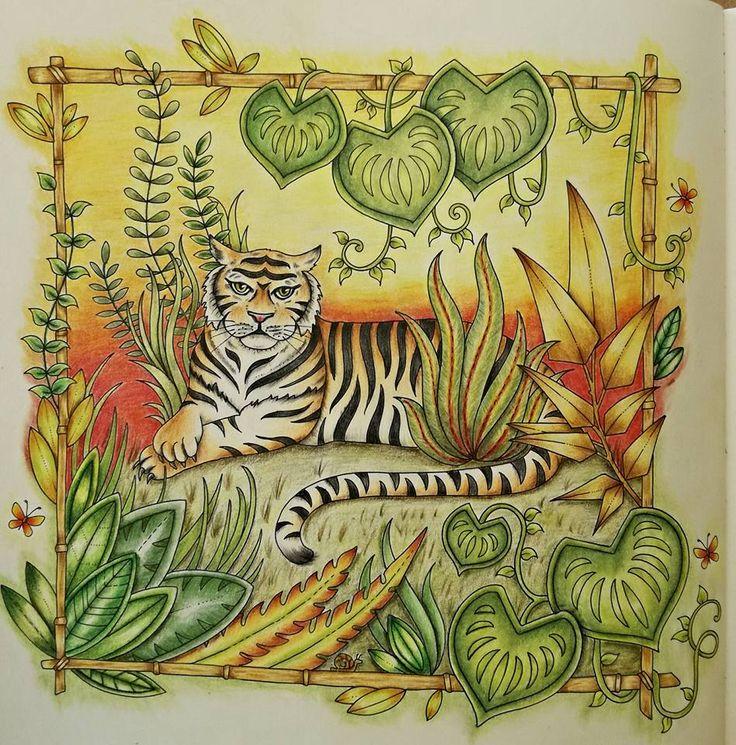 MagicalJungle JohannaBasford ColouringAdult ColoringColoring BooksJohanna