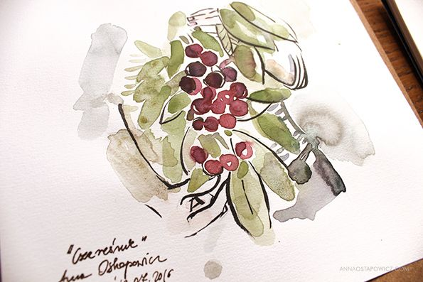 In The Garden, illustration, Anna Ostapowicz, #watercolour, #drawing, #summer, #lifestyle, #nature, #garden, #illustration, #fruits, #art, #bookillustration