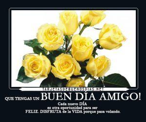 Rosas amarillas con frases de buenos días