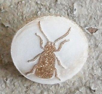 Bouton de nacre monté sur pied, 18mm. Petit insecte doré, dit Gendarme, une merveille, en sélection c'est Suppléments d'âme, #boutons, #merceriefine, #Rennes, #supplementsdame