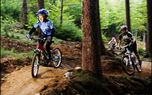 Mountain bike on professional tracks - Easy - Mountain bike tracks perfect for all ages.