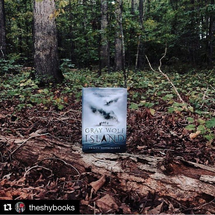 Pretty sure @theshybooks discovered Gray Wolf Islandas in the actual island not the book. This could have legitimately been photographed there.  Definitely jump over to her profile to see her other lovely pics. . Unrelated: Thank you all SO MUCH for your kind words yesterday and for making GWIs release so special.  . .    from @theshybooks     Hey guys! I am so excited to share this book with you! I think you guys really gonna like this one. Check it out because this book will be one hll of…