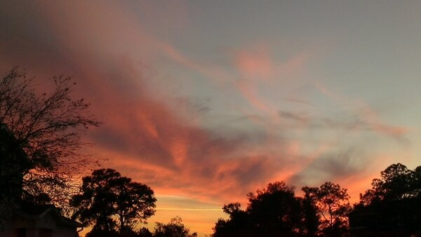 #Sunset by Joshua Jackson (Using his HTC phone)