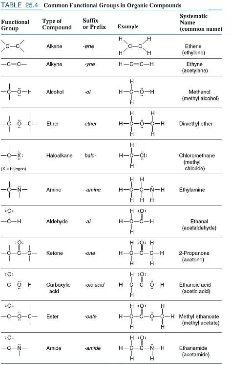 Chapter 23 Functional Groups Worksheet Answers Proga Info